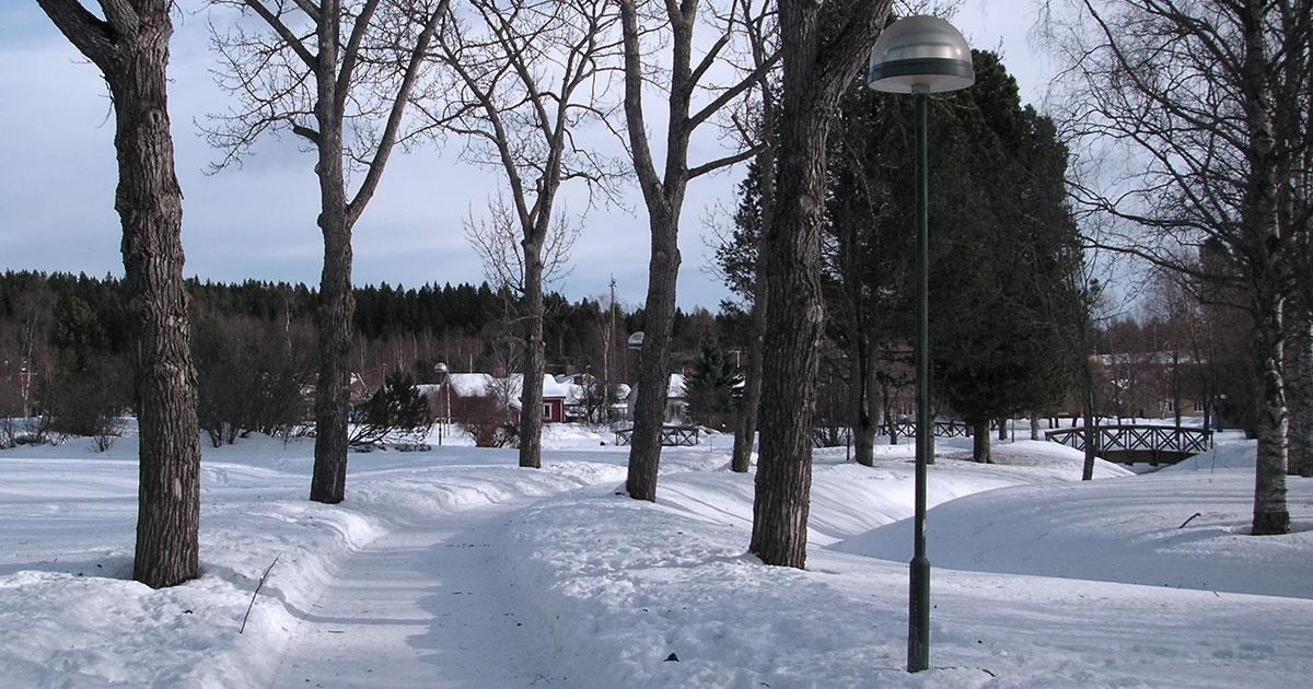 Hagamannen fick sitt namn efter området Haga i Umeå