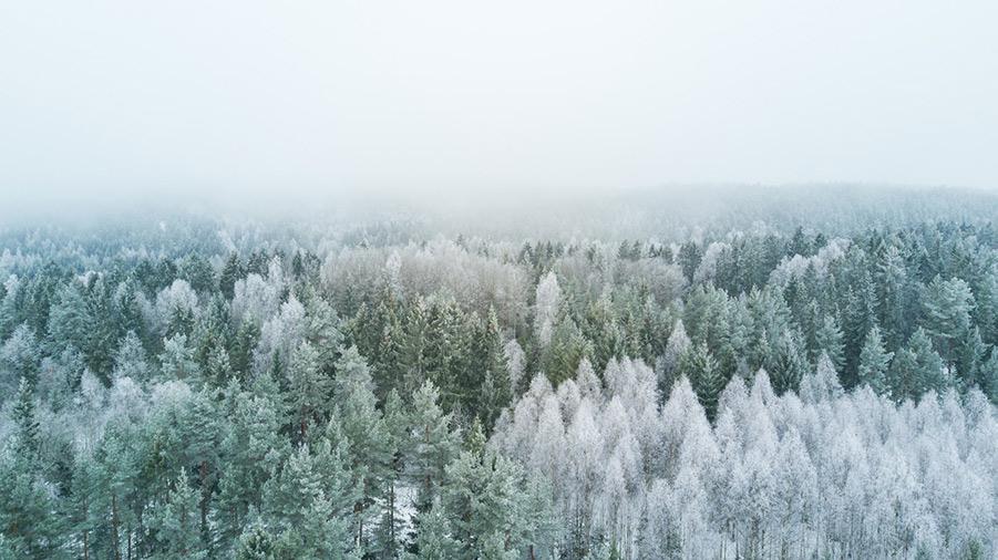 Innan Ragnarök kommer tre års vinter